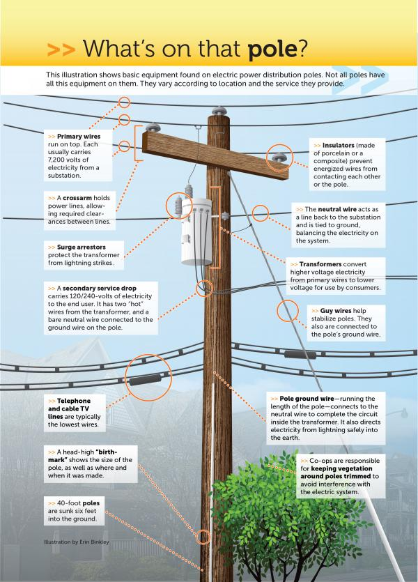 What's on the utility pole?