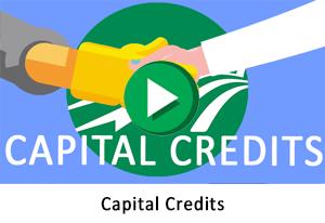 Capital Credits animation